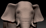 Alfonso Petersen - Elefante